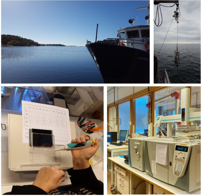 Environmental samples from the field, analyzed with advanced laboratory methods.